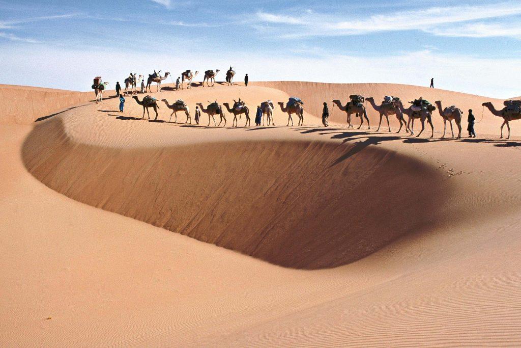 Maximilien Bruggmann a ramené de magnifiques images du Sahara et l'exposition de Montpellier y est consacrée.